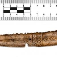 Fragment jednostronnego grzebienia rogowego